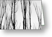 The Lightning Man Greeting Cards - Black and White Tree Branches Abstract Greeting Card by James Bo Insogna
