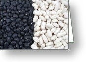 Racism Greeting Cards - Black beans and white beans Greeting Card by Gaspar Avila