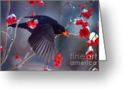 Feeding Mixed Media Greeting Cards - Black Bird in Flight Greeting Card by Jerry L Barrett