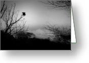 Buzzard Wings Greeting Cards - Black Buzzard 8 Greeting Card by Teresa Mucha