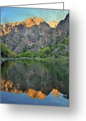 Marty Koch Pyrography Greeting Cards - Black Canyon 4 Greeting Card by Marty Koch