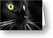 Black Cat Greeting Cards - Black Cat 2 Greeting Card by Craig Incardone