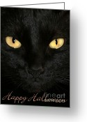 Witches Greeting Cards - Black Cat Halloween Card Greeting Card by Sabrina L Ryan