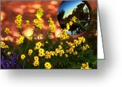 Black Eyed Susans Greeting Cards - Black-eyed Susans and Adobe Greeting Card by Paul Cutright