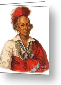 Indigenous American Greeting Cards - Black Hawk, Leader Of The Sauk American Greeting Card by Photo Researchers