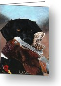 Hunting. Hunting Dog Greeting Cards - Black Labrador with Pheasant Greeting Card by Bradley Litz