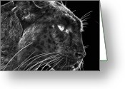 Black Leopard Greeting Cards - Black Leopard 2 Greeting Card by Larry Linton