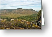 Black Mesa Greeting Cards - Black Mesa View Greeting Card by Fred Lassmann