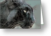 Panther Greeting Cards - Black Panther Greeting Card by Larry Linton