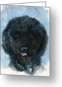 Black Fur Greeting Cards - Black Poodle Puppy Greeting Card by Sheryl Heatherly Hawkins