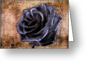 David Dehner Greeting Cards - Black Rose Eternal   Greeting Card by David Dehner