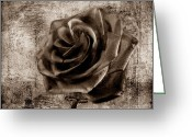 David Dehner Greeting Cards - Black Rose Eternal  S Greeting Card by David Dehner