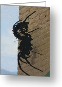 Toxic Greeting Cards - Black Widow Spider Art Greeting Card by Karon Melillo DeVega