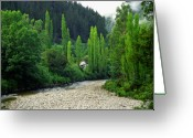 Shack Greeting Cards - Blacks Point Reefton  Greeting Card by Kevin Smith