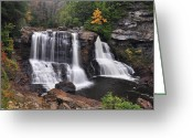 Virginia Pyrography Greeting Cards - Blackwater Falls Greeting Card by Bruce Wunderlich