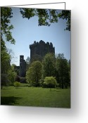Luck Greeting Cards - Blarney Castle Ireland Greeting Card by Teresa Mucha