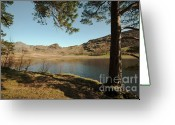 Hare Greeting Cards - Blea Tarn Greeting Card by John D Hare