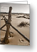 Sand Fences Photo Greeting Cards - Bleak Greeting Card by Heather Applegate
