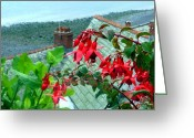 Sea Flowers Greeting Cards - Bleeding Hearts of England Greeting Card by Mindy Newman