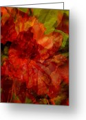 Photograph Digital Art Greeting Cards - Blood Rose Greeting Card by Tom Romeo