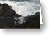 Occurrence Greeting Cards - Blowhole Greeting Card by Will Cornell
