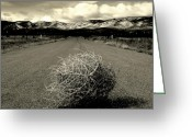 Tumbleweed Greeting Cards - Blowin In The Wind.. Greeting Card by Al  Swasey