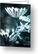 Blau Greeting Cards - Blue Greeting Card by Angela Doelling AD DESIGN Photo and PhotoArt