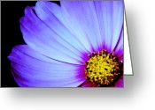 Flower Greeting Card Greeting Cards - Blue Awakening Greeting Card by Tam Graff