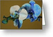 Designers Choice Photo Greeting Cards - Blue Azure II Greeting Card by Don Wright