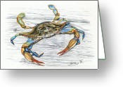 Water Drawings Greeting Cards - Blue Crab Greeting Card by Jana Goode