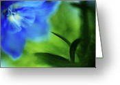 Blue Delphinium Greeting Cards - Blue Delphinium Greeting Card by Bonnie Bruno