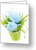 Ribbons Greeting Cards - Blue Easter eggs and green grass Greeting Card by Elena Elisseeva