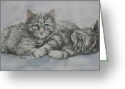 Pets Portraits Greeting Cards - Blue Eyes  Greeting Card by Cynthia House