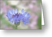 Stamen Greeting Cards - Blue Fantasy Greeting Card by Kim Hojnacki