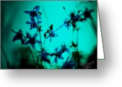 Flowery Greeting Cards - Blue Flowers Greeting Card by Renata Vogl