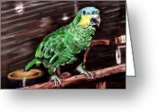 Amazon Parrot Greeting Cards - Blue-fronted Amazon Parrot Greeting Card by Arline Wagner