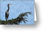 Oregon Wildlife Digital Art Greeting Cards - Blue Heron at Big Creek Greeting Card by Alice Martin