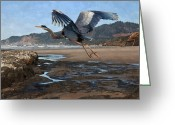 Oregon Wildlife Digital Art Greeting Cards - Blue Heron at Moolack Beach Greeting Card by Alice Martin