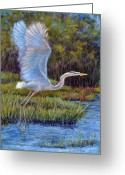 Heron Greeting Cards - Blue Heron in Flight Greeting Card by Susan Jenkins