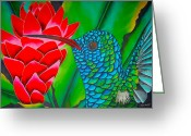 Lilies Tapestries - Textiles Greeting Cards - Blue Hummingbird Greeting Card by Daniel Jean-Baptiste
