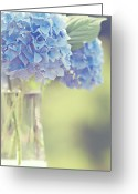 Ethereal Water Greeting Cards - Blue Hydrangea Greeting Card by Photography by Angela - TGTG