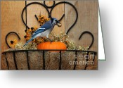 Black Eyed Susans Greeting Cards - Blue Jay in Flower Basket Greeting Card by Marjorie Imbeau