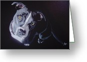 Pit Bull Greeting Cards - Blue Light Greeting Card by Stacey Jasmin