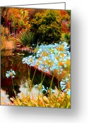 Digital Flower Greeting Cards - Blue Lily Water Garden Greeting Card by Amy Vangsgard
