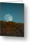 Moonrise Greeting Cards - Blue Moon Risign Greeting Card by Karen Musick