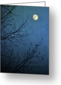 Bare Tree Greeting Cards - Blue Moon Greeting Card by Susan McDougall Photography