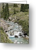 Ghost Photographs Greeting Cards - Blue Mountain Stream Greeting Card by Melany Sarafis