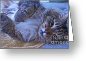 Animals Greeting Cards - Blue Oblivion Greeting Card by Gwyn Newcombe