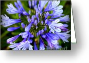Blue Florals Greeting Cards - Blue On Blue Greeting Card by Karen Wiles