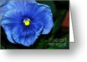 Blue Petals Greeting Cards - Blue Pansy Greeting Card by Kaye Menner